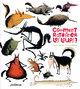 COMMENT RATATINER LES LOUPS ?/COM/COMMENT RATATINER.../GLENAT JEUNESSE/COMMENT R