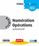 FICHIER NUMERATION OPERATIONS CE2 NIVEAU 1 FICHIER 5///PEMF/