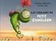 LES COULEURS DE PETIT CAMELEON///PEMF/