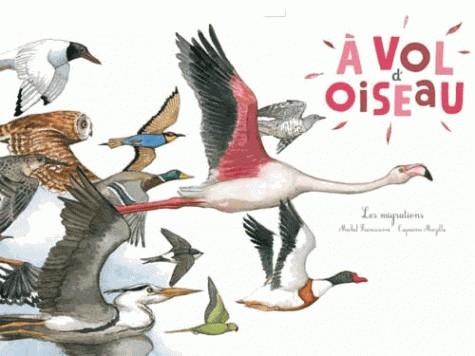 A VOL D'OISEAU - / DOCUMENTAIRES / RICOCHET